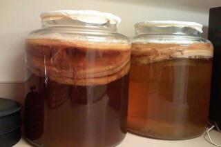 Как чайный гриб влияет на грудное вскармливание